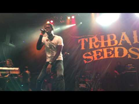 Tribal Seeds Winter Roots Tour  Boston House of Blues 22317
