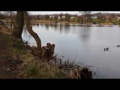 Smithies Reservoir POV. Barnsley, Yorkshire