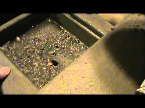 Gem Mining at Fort Rapids Indoor Waterpark Resort Columbus, Ohio