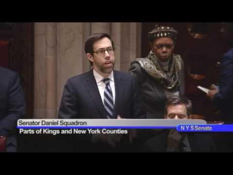 New York State Senate Session- 01/23/17