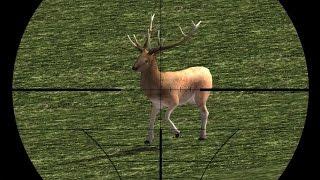 Охотник на оленей (Deer Hunter) // Геймплей