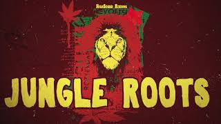 REGGAE INSTRUMENTAL 2019 - Jungle Roots