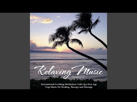 Top Tracks - Mindfulness Meditation Universe / Relaxing Music Master