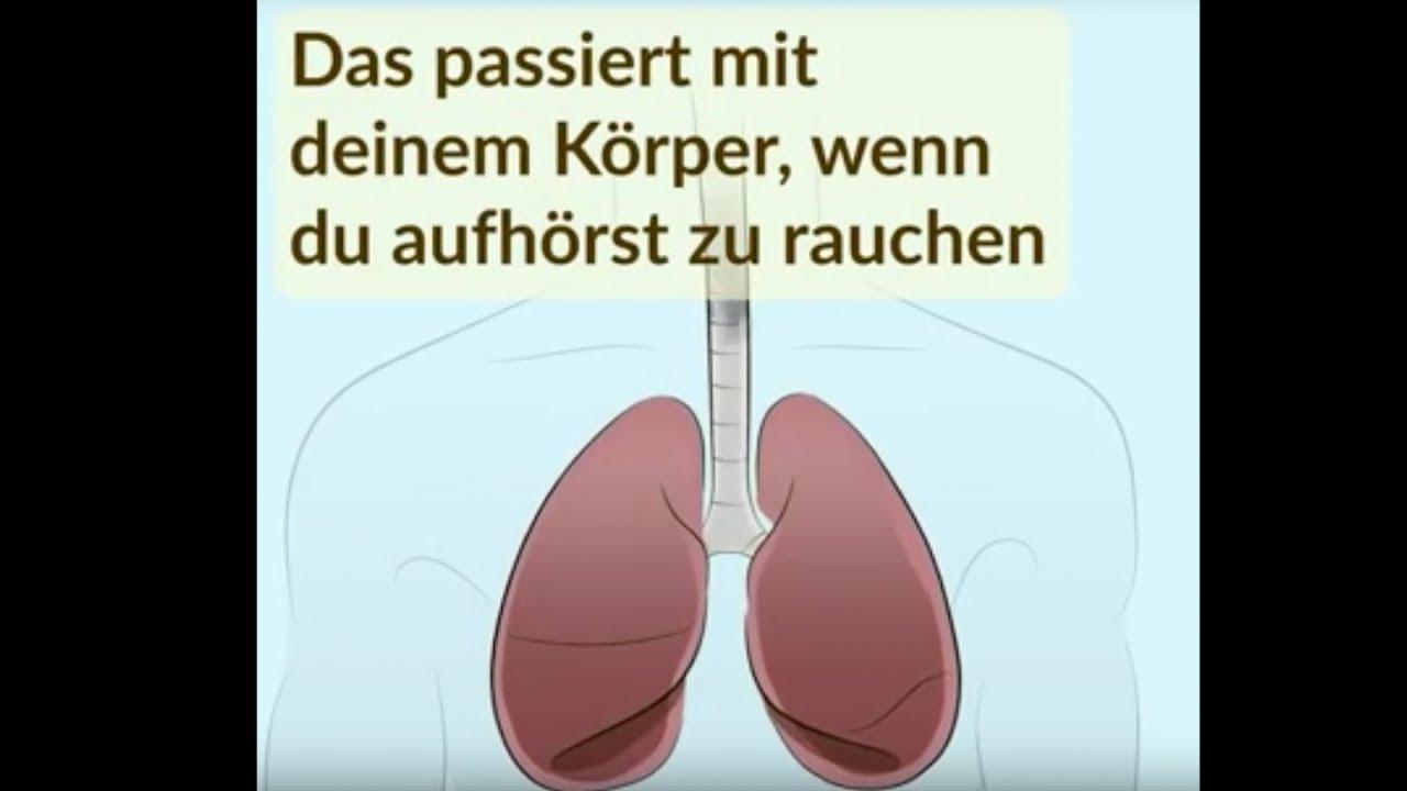 raucherlunge regeneriert