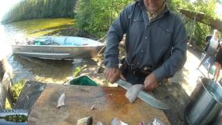 Filleting walleye with a really really big knife.