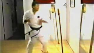 Power Training for Karate (Tsunami) [VHS] (1994) pt 7