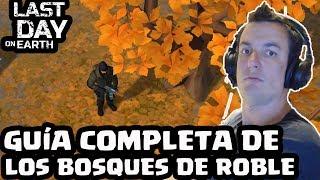 GUÍA COMPLETA DE LOS BOSQUES DE ROBLE   LAST DAY ON EARTH: SURVIVAL   [El Chicha]