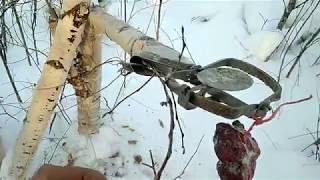Охота на соболя. Сезон 18-19 г. 25-26.11.18 г