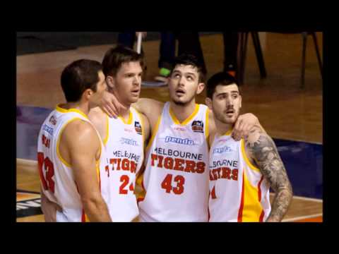 Tigers Confidential review rnd 18 at Wollongong and Adelaide
