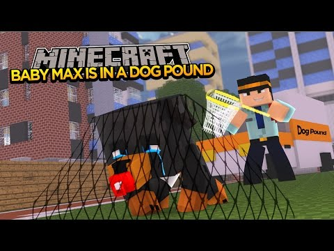Minecraft - Donut the Dog Adventures -BABY MAX GETS PUT INTO A DOG POUND!!