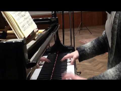슈베르트: 바이올린과 피아노를 위한 환상곡 C장조 D. 934 중 2악장_ 김수연, 임동혁