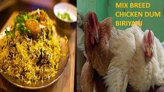 MIX BREED CHICKEN BIRYANI / VILLAGE RECIPE / NAATI STYLE DUM BIRIYANI