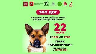 """22 июля! Москва, парк """"Кузьминки""""! Фестиваль-пристройство собак из приюта"""