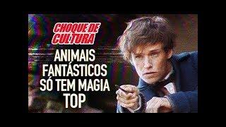 Animais Fantásticos só tem Magia TOP | Choque de Cultura #2