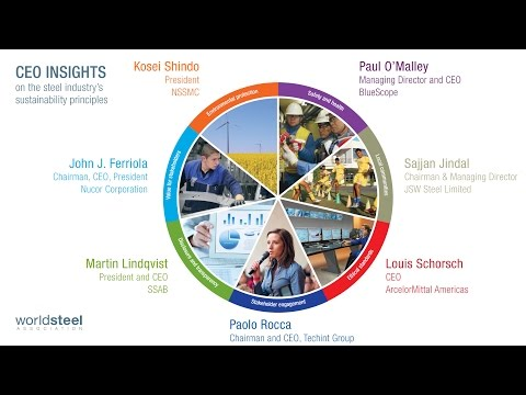 Compilation of CEO Insights on Sustainable Development
