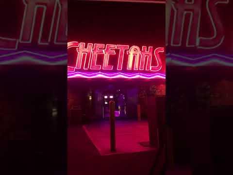 Cheetahs Las Vegas!