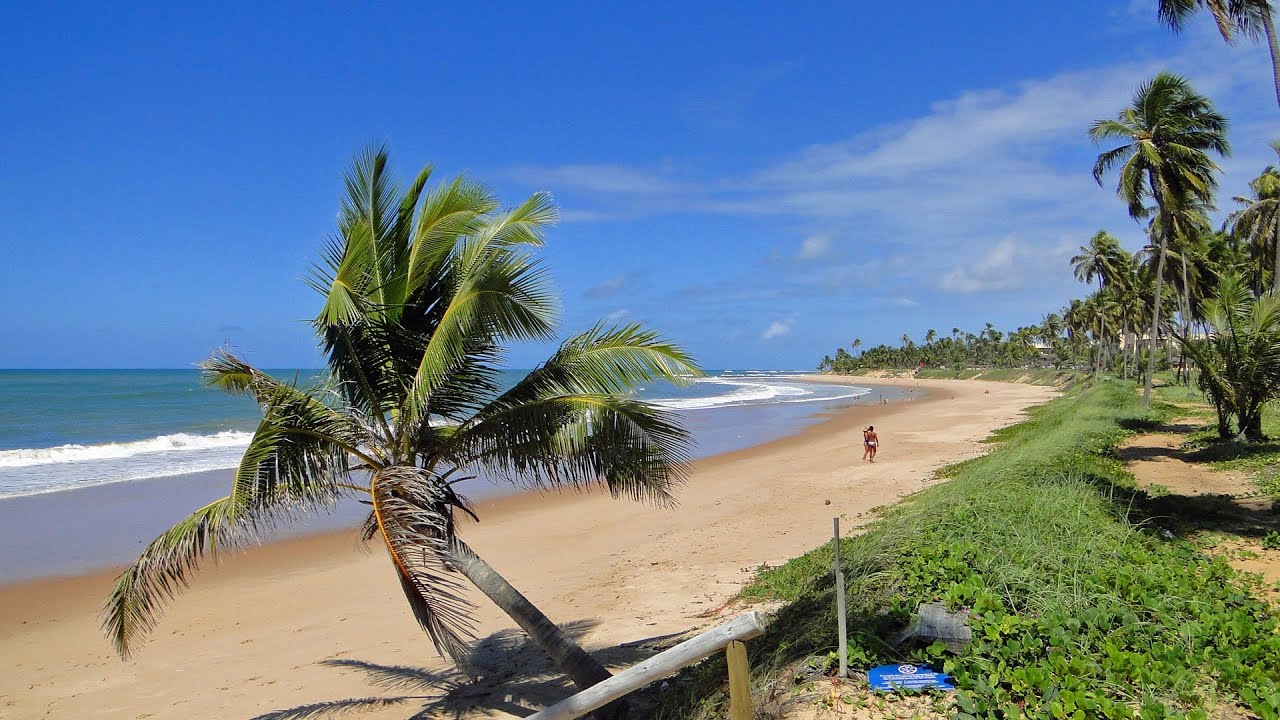 Bahia Coast Dreamlike Palm Beaches Brazil In HD YouTube