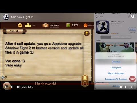 hacked shadow fight 2 ios