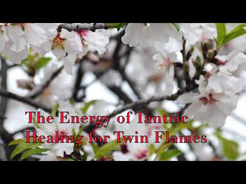 Twin Flames Energy 2nd April 2019