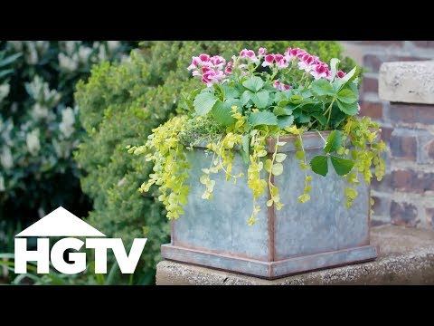 DIY Faux Zinc Planter - Way to Grow - HGTV