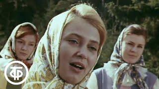 Лето рядового Дедова. Художественный фильм (1971)