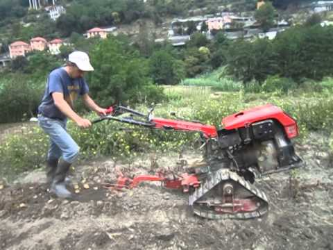 Fresatura orto con motocoltivatore 937 doovi for Trincia per motocoltivatore goldoni