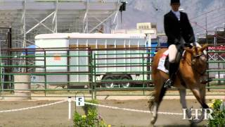 Bishop Mule Days Events: Dressage