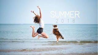 SUMMER 2018   sheltie Bonnie