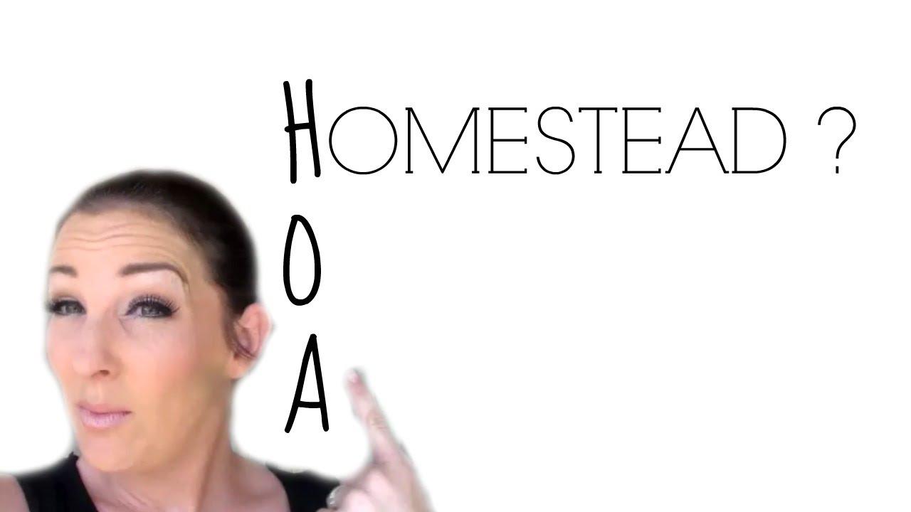 my hoa backyard homestead youtube