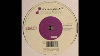 Quarion - The Workout