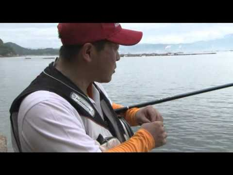 Phao câu cá tráp KURODAMA