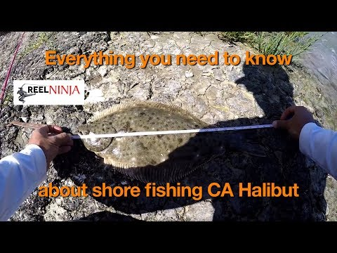 How To Shore Fish For California Halibut