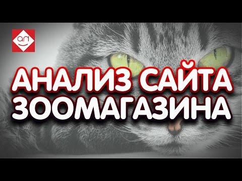 Анализ юзабилити интернет магазин зоо. Аудит сайта интернет магазина для животных. Смотри как сделат