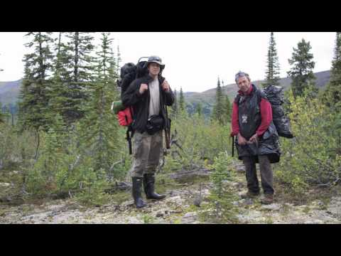 Gold mining in the Yukon-Prospecting