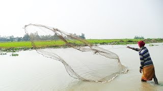 Cast Net Fishing in River With Beautiful Nature। River Fishing by Cast Net