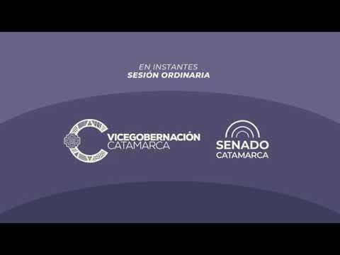 Décima Sesión Ordinaria 2020