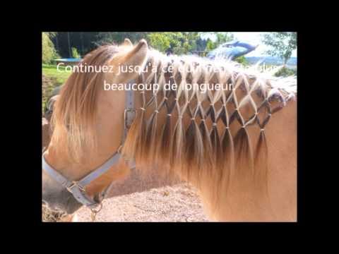 Faire un damier son cheval tuto youtube - Faire un ourlet de jean ...