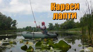 КАРАСЬ Огромный карась на болоте в жару ПОПЛАВОК Рыбалка в июле