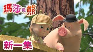 瑪莎與熊  - 新一集 🎬  找到我! 🕵 | Masha and The Bear