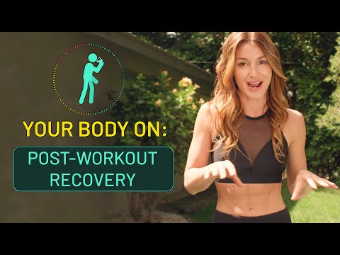 Your Body On Post-Workout Recovery | Inverse
