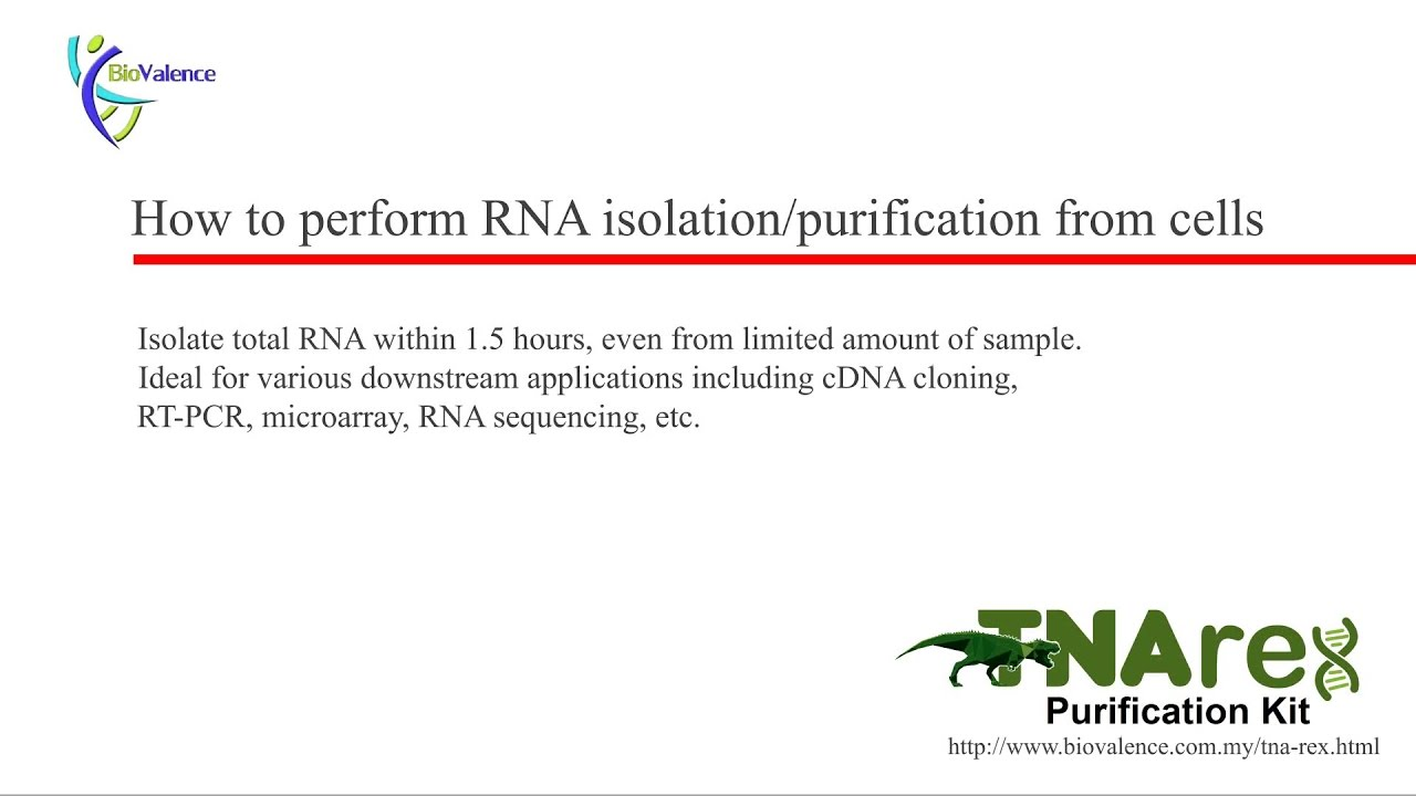 tnarex purification kit demonstration video rna extraction from cell culture