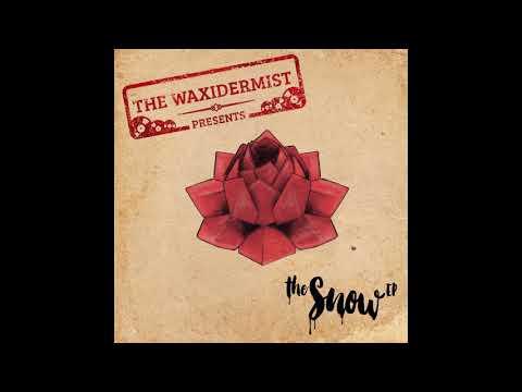 The Waxidermist - The Snow feat. RacecaR & Anna Kova (Radio Edit)