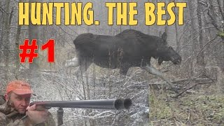 Hunting. The Best. Охота на лося, кабана и косулю. Лучшее. #01
