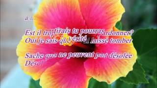 Karaoké Sorry Justin Bieber (french version)
