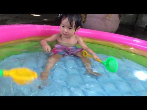 Cá vàng bơi trong bể nước...