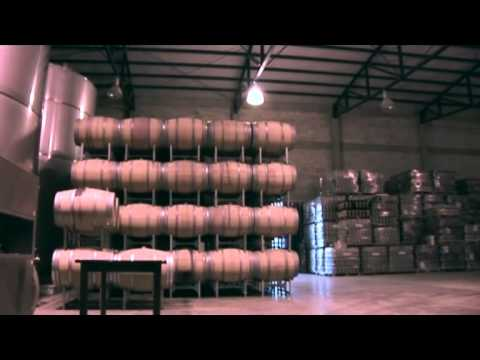 Merrily on high: Argentina's Andean wine trail