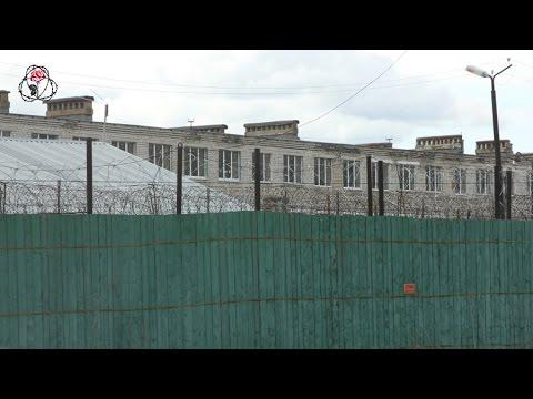 Заключенные ИК-8 Ярославской области рассказали о зверских избиениях