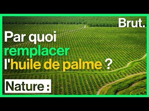 Par quoi remplacer l'huile de palme ?
