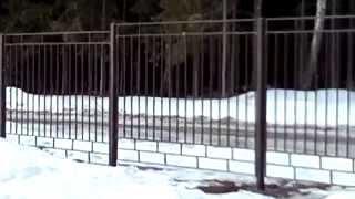 Секционные заборы(Фабрика ковано-сварных изделий