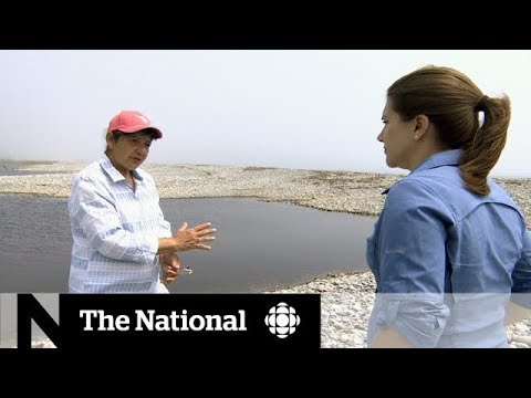 Nova Scotia wants law to protect coast from climate change